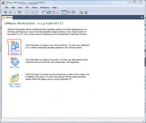 Main VMWare Window